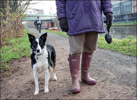 Dog and walker at Leamington Spa