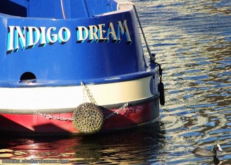 Indigo Dream - photo by Monika of http://monika.shutterchance.com/